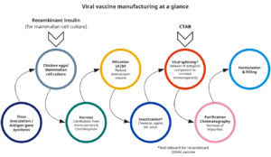 Vaccine production viral